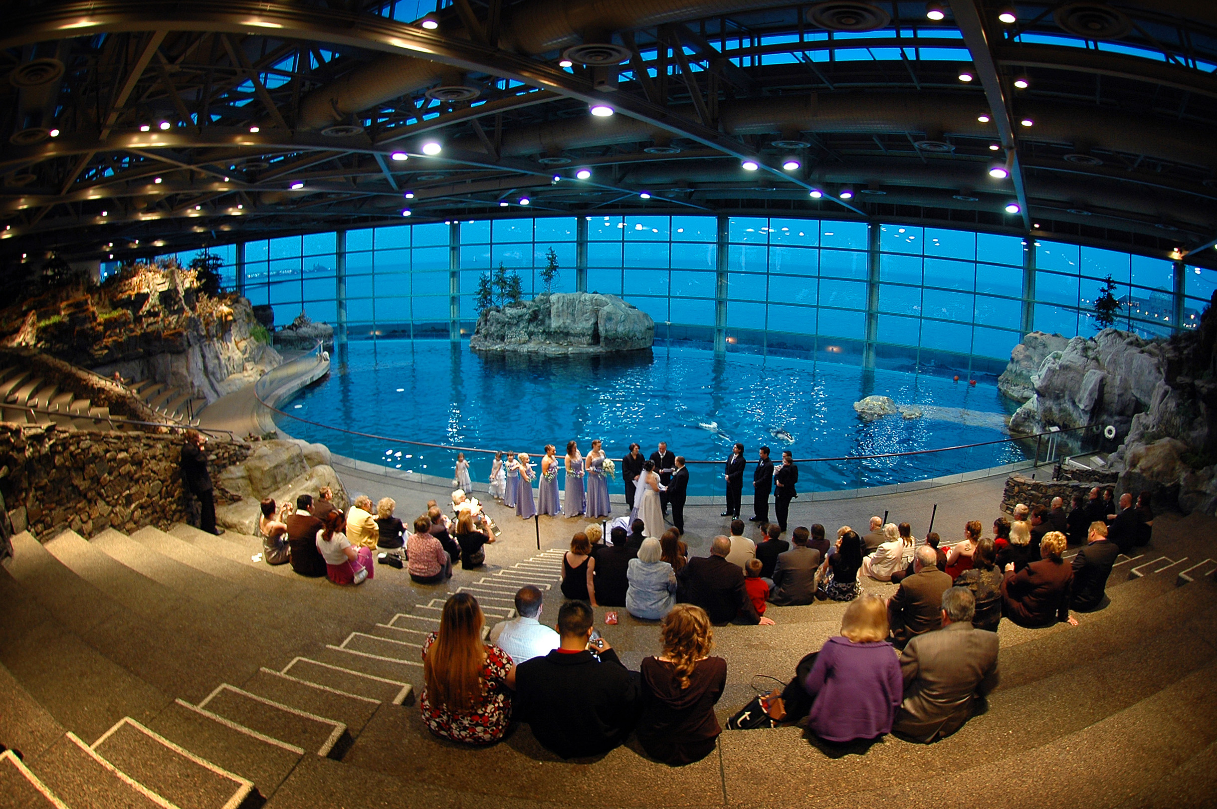 Wedding Ceremony at the Chicago Shedd Aquarium