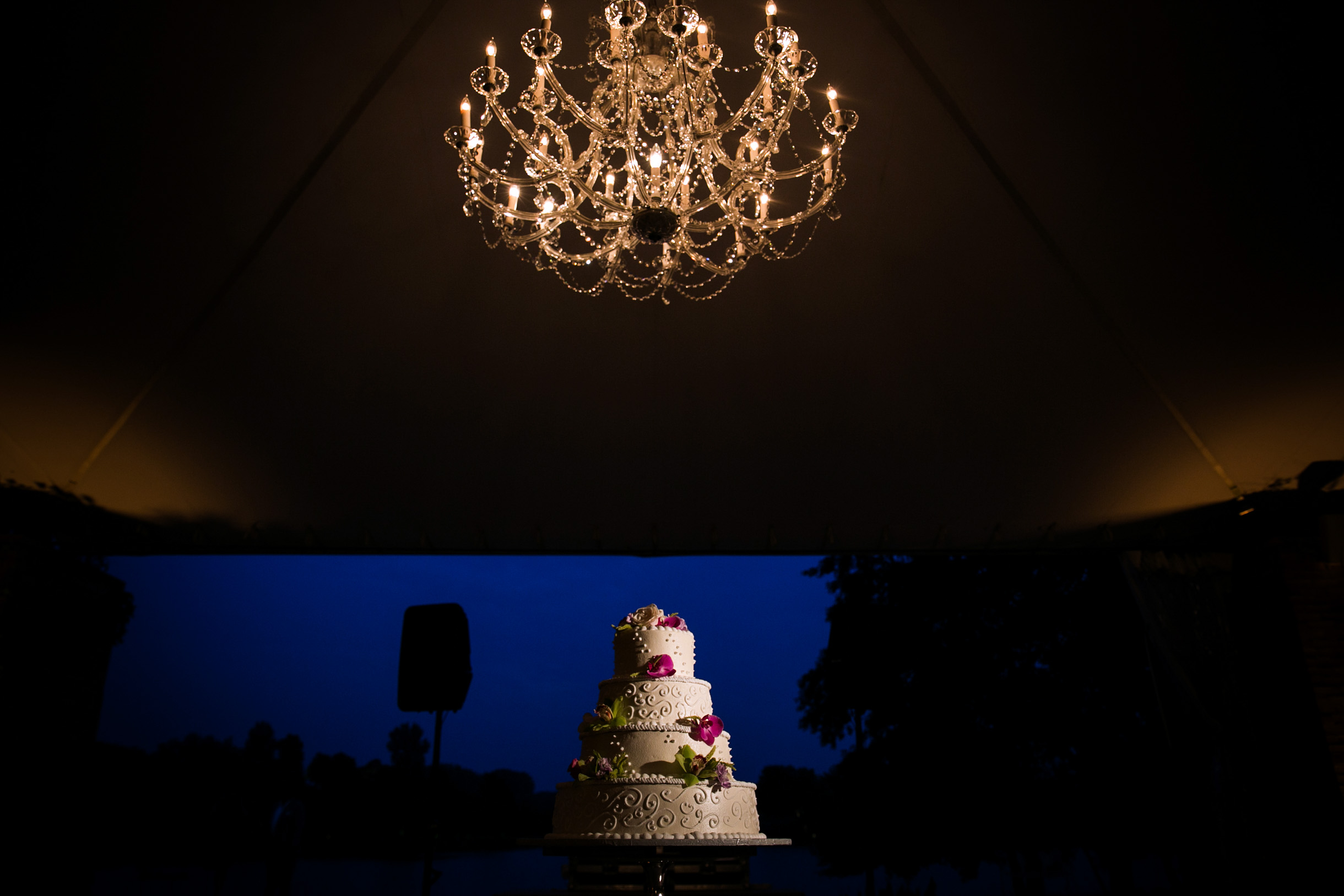 artistic colorful photo of wedding cake dramatically lit under tent wedding reception at mcginley pavilion of the Chicago Botanic Garden-109