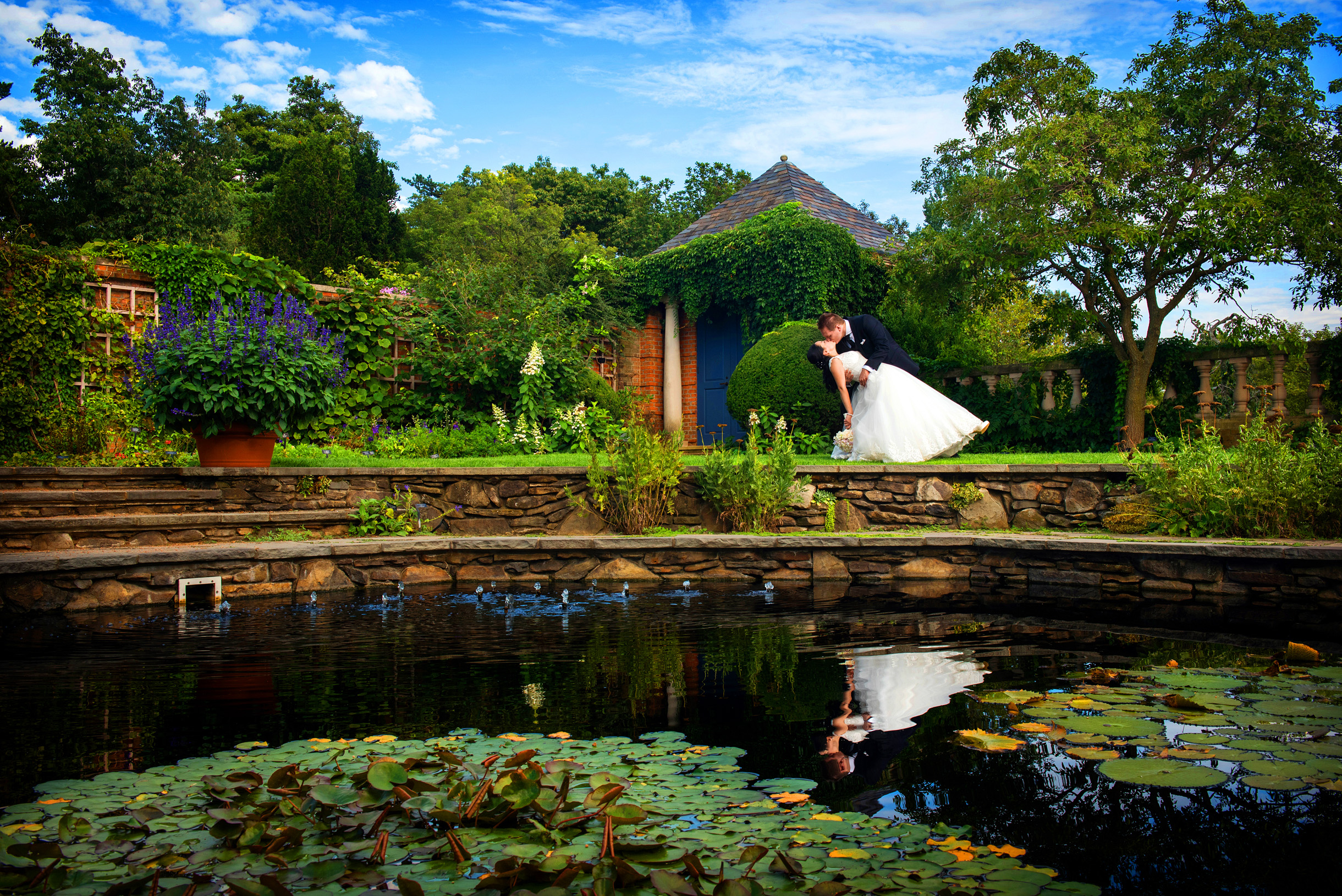 bride and groom dipping at the rose garden of the Chicago Botanic Garden