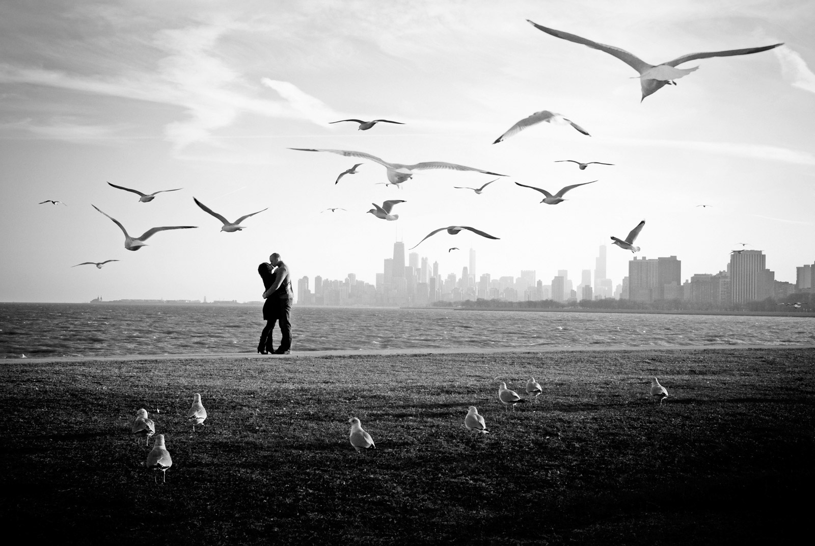 Award winning Chicago engagement photo of couple kissing framed by birds and skyline