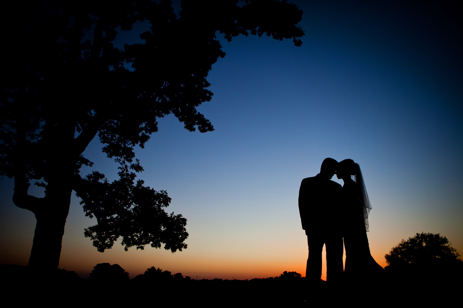 Bride and Groom in silhouette at sunset surrounded by trees and nature