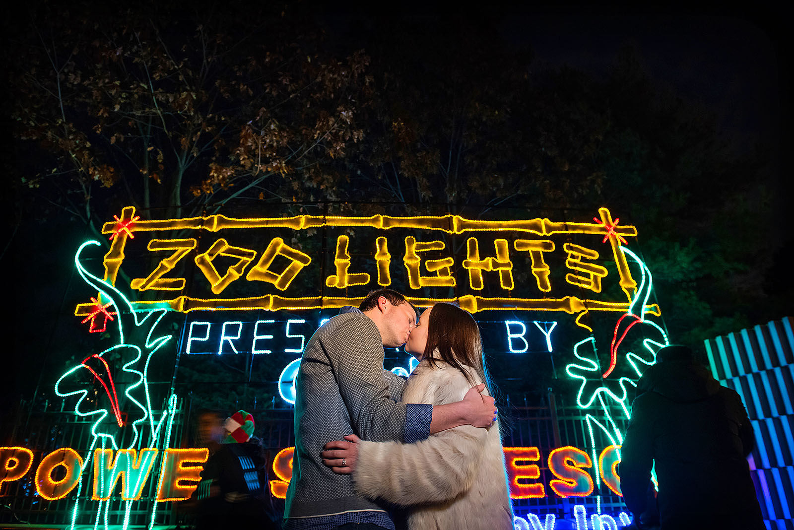 Lincoln Park Zoo Lights Engagement Session