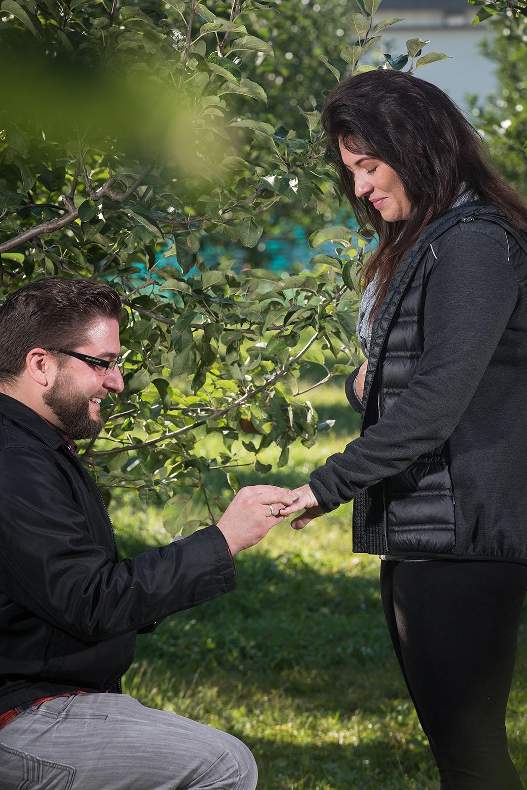 Proposal31