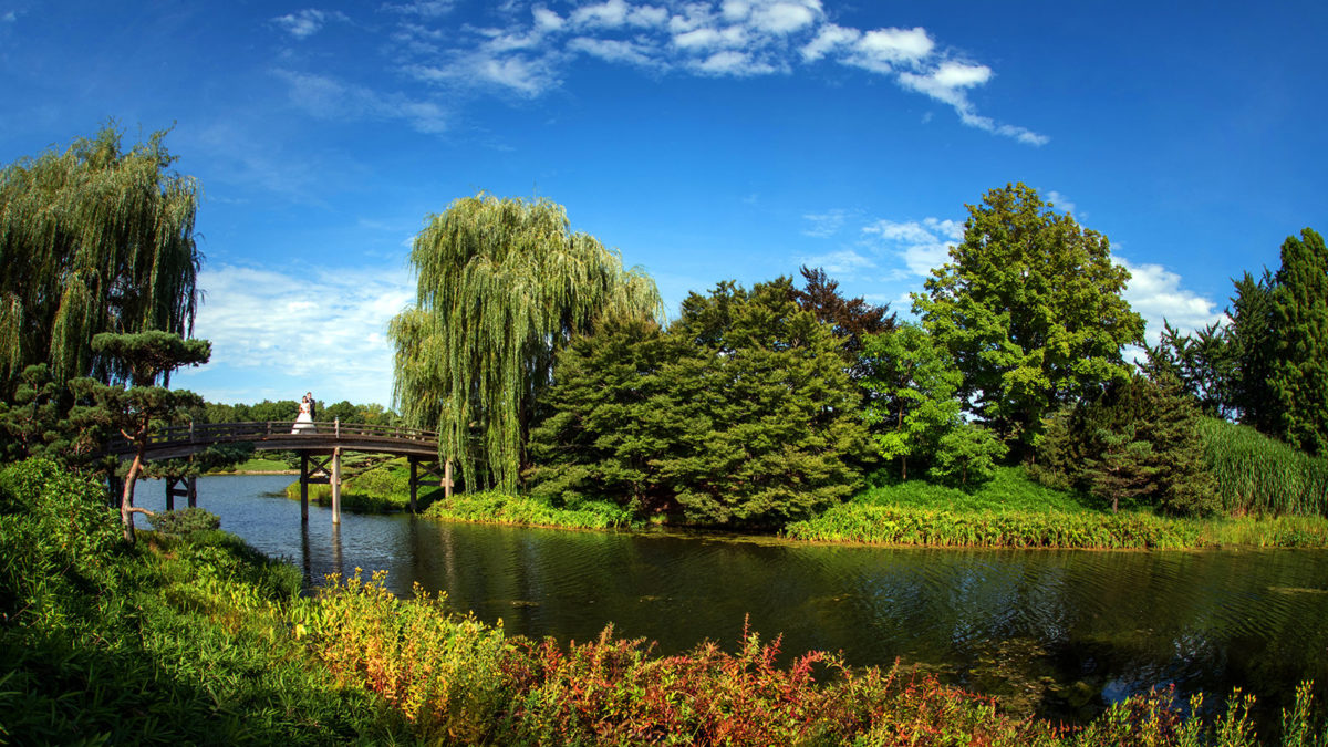 Chicago Botanic Garden Photography